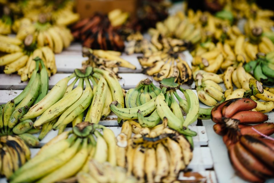 Der Wert von geretteten Lebensmitteln